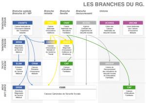 COURS TERMINALE SCIENCES DE LA SANTE ET DU SOCIAL schema-securite-sociale-regime-general_1-300x212